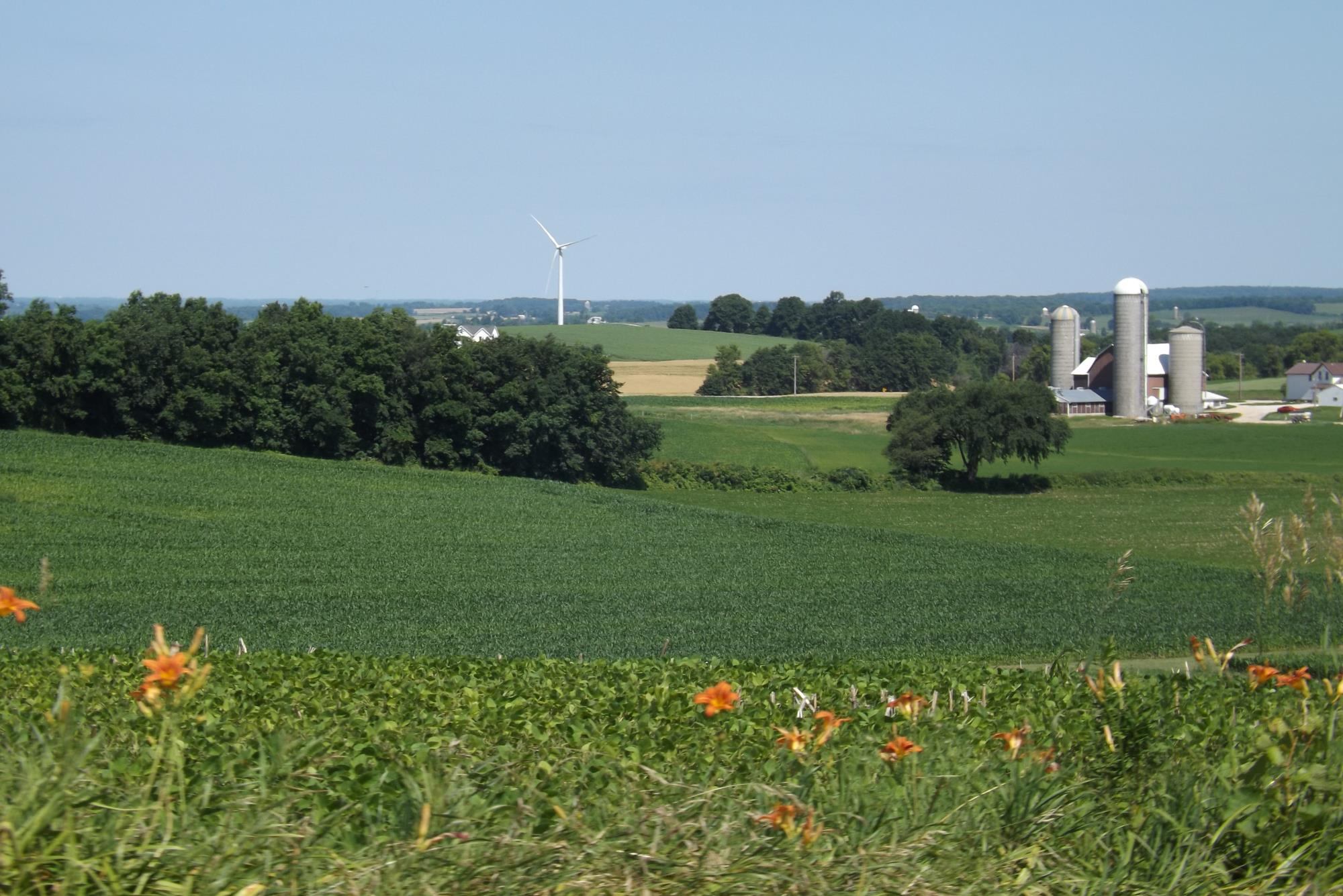 Dodge County Landscape
